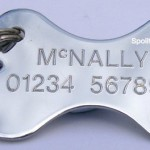 CHROME-BONE-Quality-Engraved-Dog-Identity-Tag-When-Checking-Out-Please-Tick-The-Gift-Message-Box-To-Enter-Your-Personalisation-Details-0