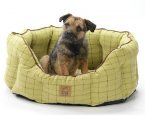 House of Paws Tweed Oval Dog Bed, 26-inch