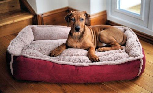 luxury fleece cradle dog bed size large. Black Bedroom Furniture Sets. Home Design Ideas