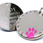Personalised-30mm-Round-Crystal-and-Pink-Paw-Dog-Pet-ID-Tag-Disc-Engraved.......TO-LEAVE-ENGRAVING-DETAILS-PLEASE-READ-PRODUCT-DESCRIPTION-LOWER-DOWN-THIS-PAGE-0