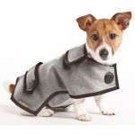 Dog Coats dog outfit