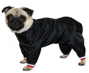 Cosipet 1/2 Leg Trouser Suit, 14-inch/ 35 cm, Black
