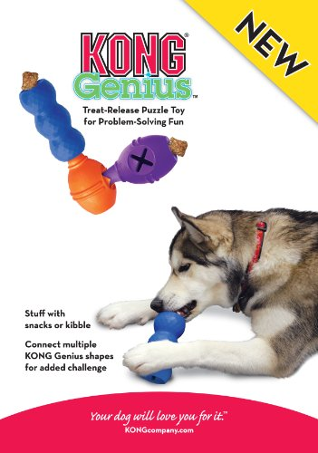 Kong Genius Leo Large Colours May Vary