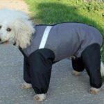 Made-in-the-UK-extreme-trouser-suit-dog-coat-grey-35cm-14inch-0