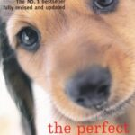 Perfect-Puppy-Take-Britains-Number-One-Puppy-Care-Book-With-You-0