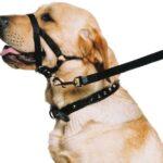 Ancol-Dog-Training-Halter-Head-Collar-Helps-Stop-Pulling-Size-Medium-3-4-0