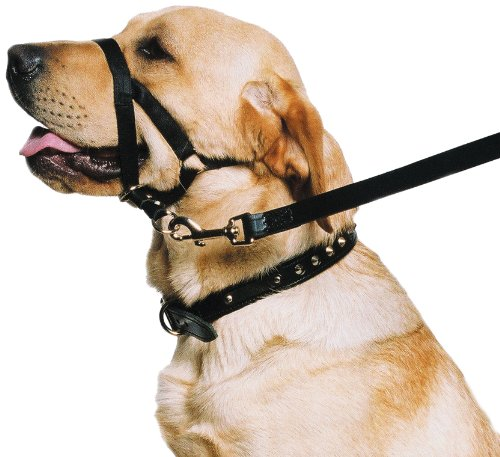 """Ancol - Dog Training Halter - Head Collar - Helps Stop Pulling - Size: Medium (3-4)"""