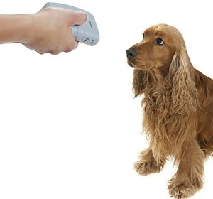 BarkStopper® Ultrasonic and audible bark deterrent device for indoor and outdoor use.