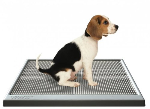 Ugodog Dog Potty - Housetraining Aid for Dogs & Puppies