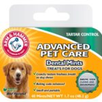 Arm-Hammer-Tartar-Control-Beef-Flavoured-Dental-Mints-0