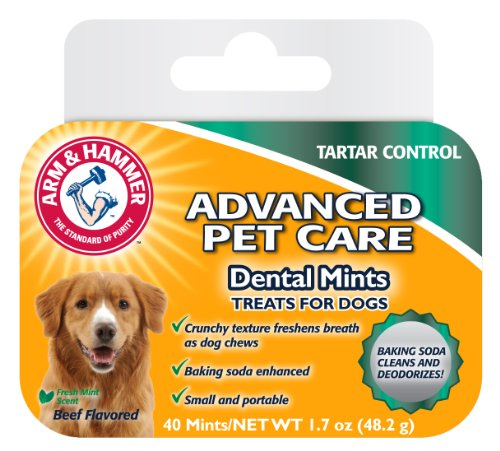 Arm & Hammer Tartar Control Beef Flavoured Dental Mints