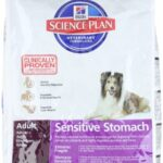 Hills Pet Nutrition Science Plan Canine Sensitive Stomach Egg And Rice Dry Dog Food 12kg