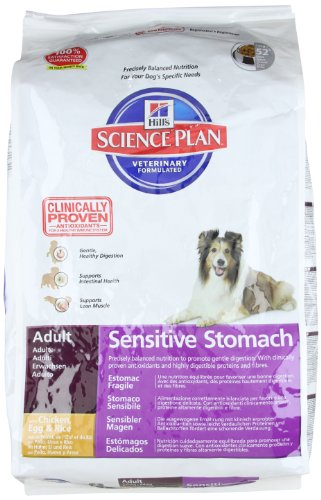 Dog Food Recipes For Dogs With Sensitive Stomachs