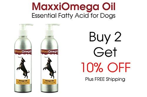 Omega oil for dogs maxxiomega fatty acid formula for for Liquid fish oil for dogs