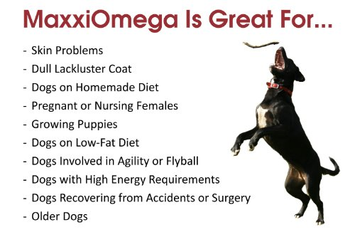 Omega Oil For Dogs Maxxiomega Fatty Acid Formula For