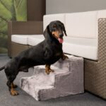 Easy-Step-dog-stairs-in-grey-Removable-cover-L43-cm-W41-cm-H29-cm-0-0