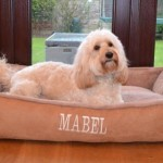 Luxury-Fleece-Cradle-Dog-Bed-Size-Large-0-14