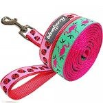 Blueberry Pet Pink Flamingo on Light Emerald or Red Ladybug Dog Lead, Matching Collar & Harness Available Separately