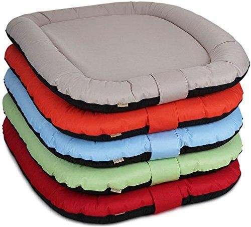 summer dog bed