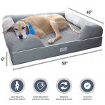 PetFusion Ultimate Pet Bed & Lounge in Premium Edition with Solid Memory Foam [Replacement covers available]