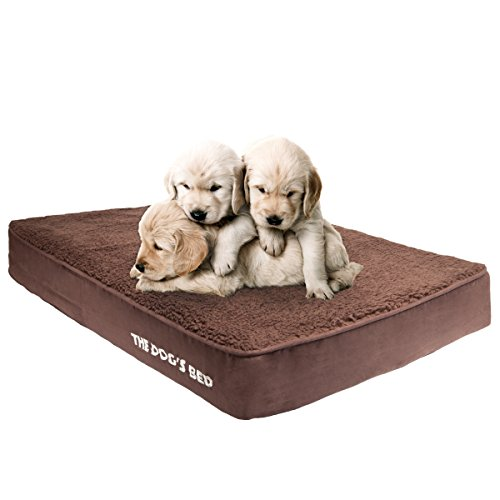 The Dog's Memory Bed