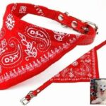 Dog/Cat Collar Red Bandana Small 23 to 29cm