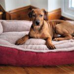 Luxury Fleece Cradle Dog Bed Size Large