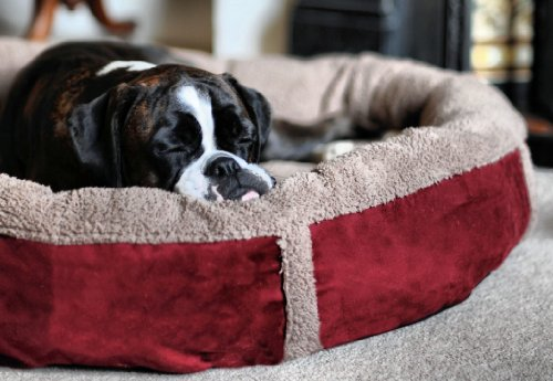 Luxury Fleece Dog Bed Size Large