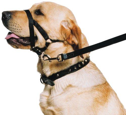 """Ancol - Dog Training Halter - Head Collar - Helps Stop Pulling - Size: Medium (3-4)"""