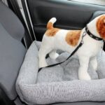 Dog / Puppy Car Bed / Seat , Cushion Travel Seat Protector