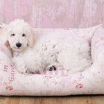 Knuffelwuff Vintage Dog bed Emilia - Shabby Chic - Size M to 3XL - Ladies or Gentlemen